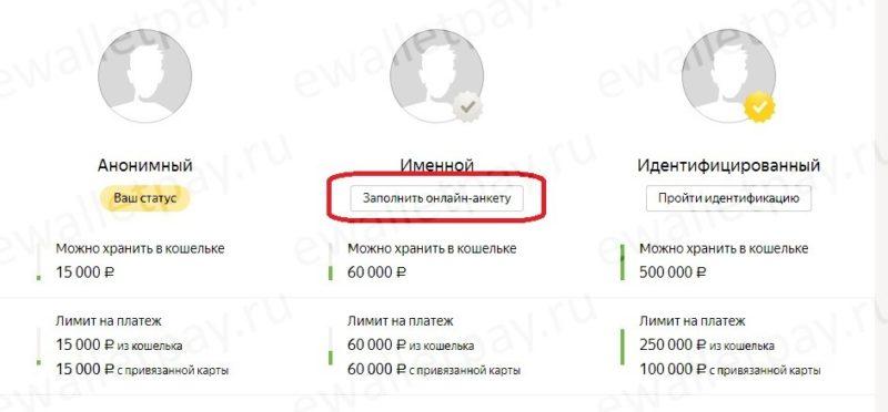 Заполнение онлайн анкеты в Яндекс.Деньги